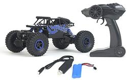 Rock Crawler Remote Control Toy Blue Rally Buggy RC Car 2.4